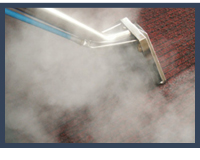 Steam Cleaning For Carpets
